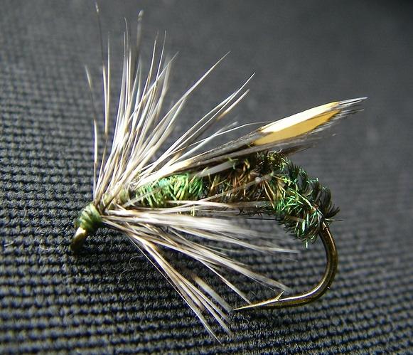 Junglecockfly